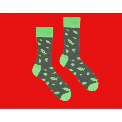 Довгі шкарпетки PESTO